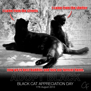 two black kitties