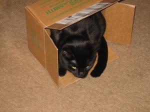 G in a cardboard box