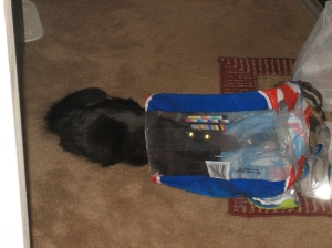 Sophie in water bag.