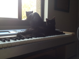 Sophie on keyboard with G