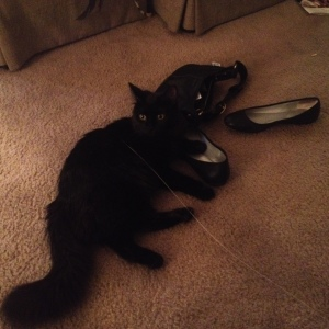 Sophie on black flats