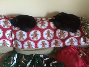 Sophie and G on gingerbread blankets