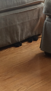 Sophie's feet peeking from under the ottoman