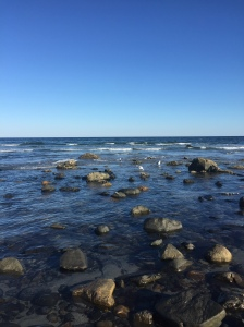 Maine shoreline...simply stunning.